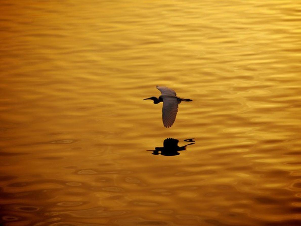 Puesta de sol en el Nilo