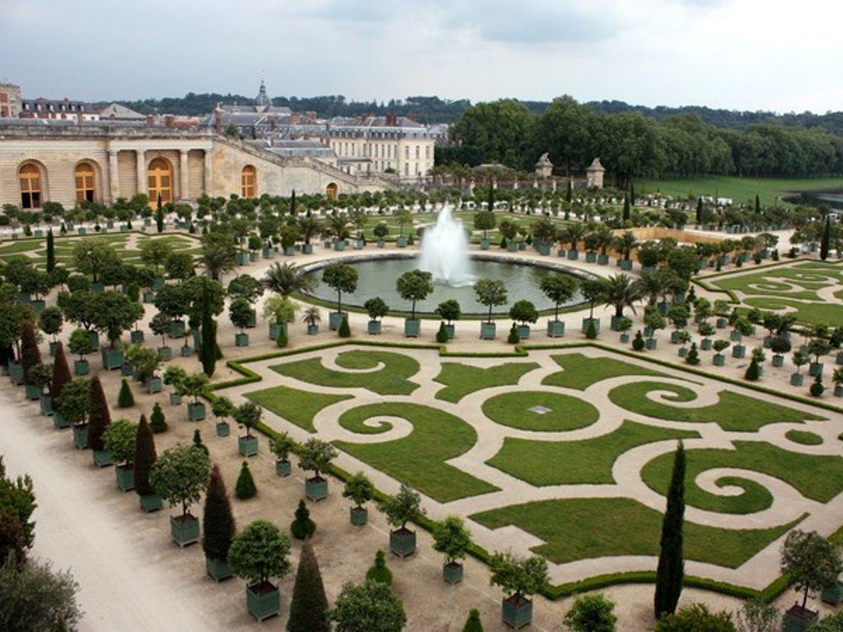 La Orangerie de Versalles