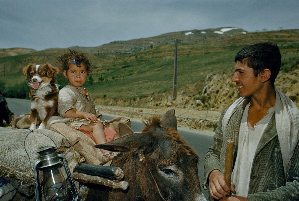 Una familia nómada viaja en un carro