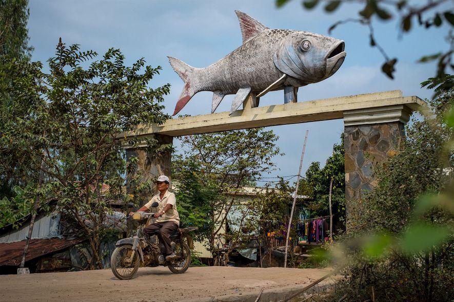 La estatua de una carpa gigante corona la entrada de una aldea cerca de la estación de campo de Bati de la Administración Pesquera de Camboya, dos horas al sureste de Phnom Penh.