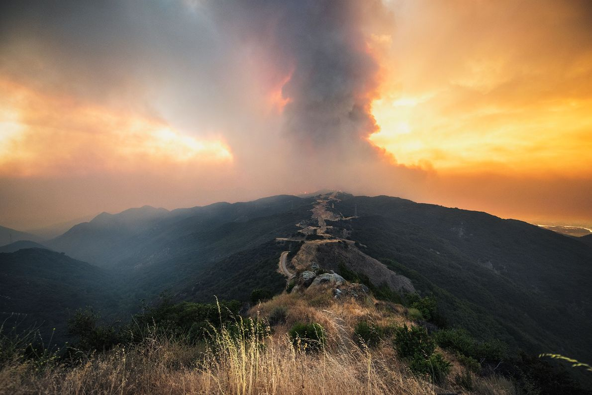 El incendio en las montañas de Santa Ynez