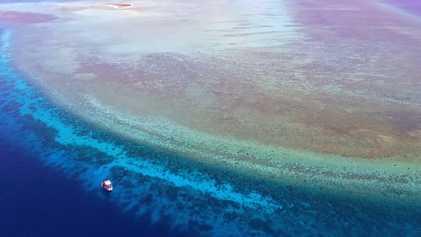 Explora uno de los pocos arrecifes de coral prístinos del mundo