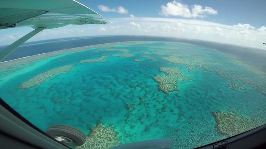 La gran barrera de coral podría estar muriendo a mayor velocidad de lo que pensamos