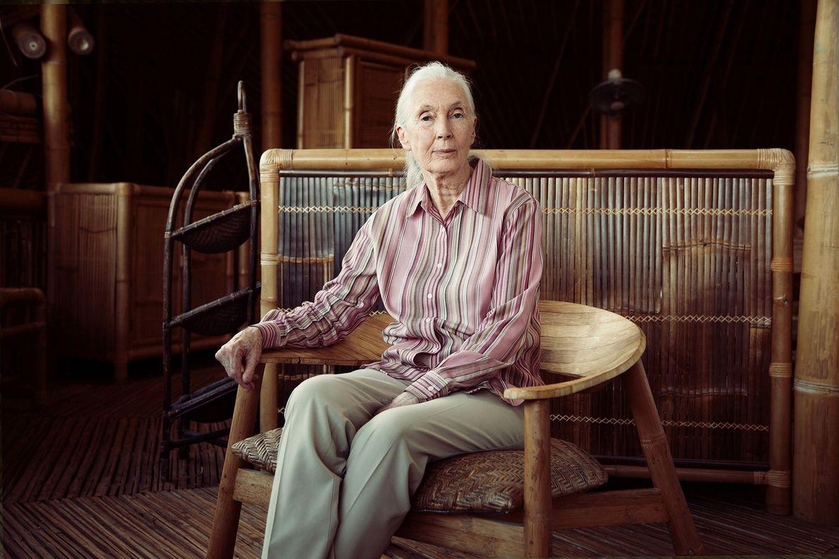 Fotografía de la doctora Jane Goodall.