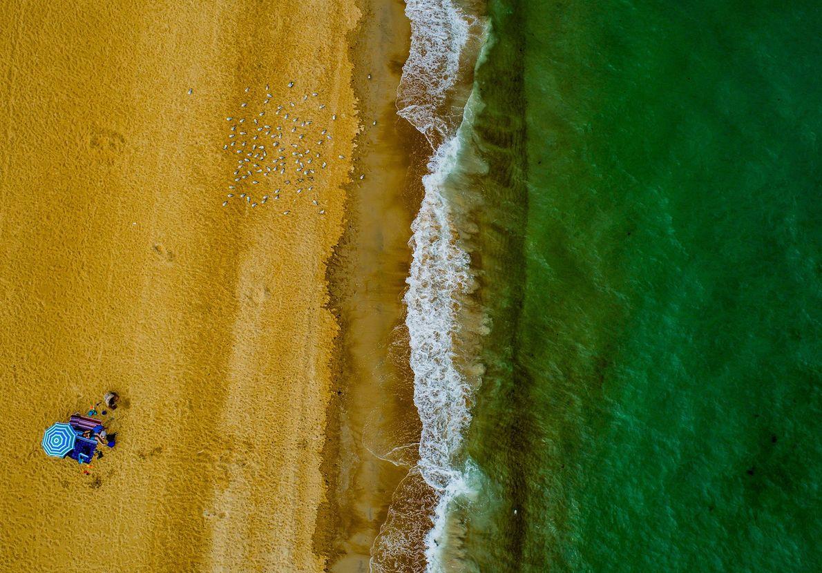 Imagen de arena dorada y agua verde en Australia