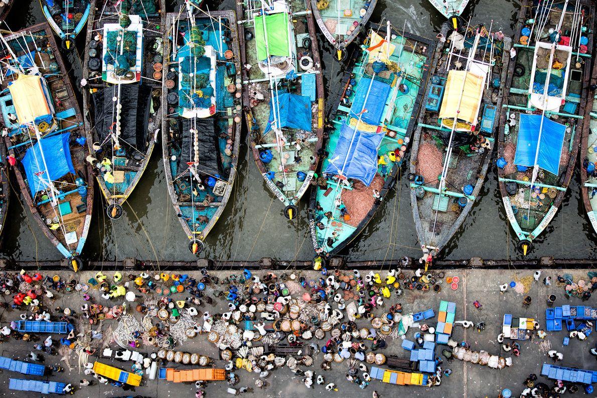 Imagen de una subasta de pescado en la India