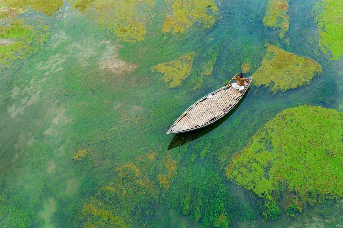 Imagen de un hombre remando a través de algas en Bangladesh