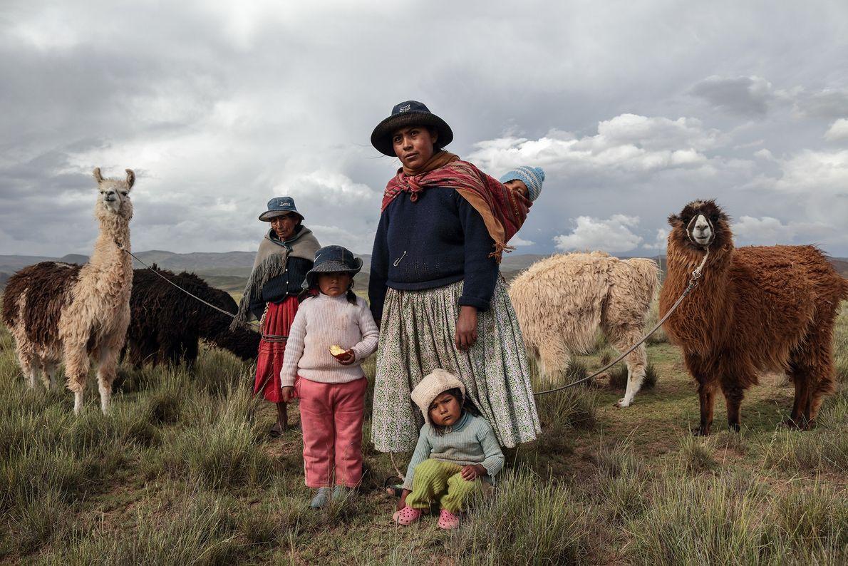 Foto de una familia de pastores con sus llamas