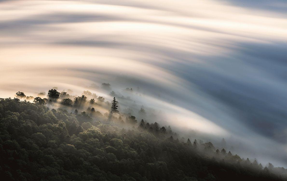 Imagen de nubes sobre un bosque en Japón
