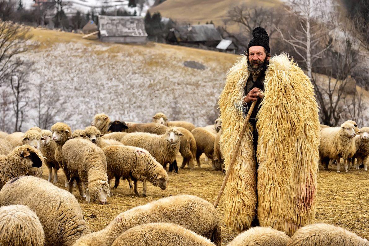Imagen de un pastor en un abrigo de pieles con su rebaño en Transilvania