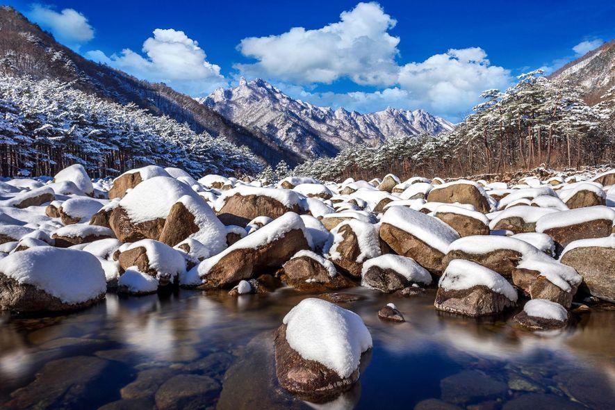 La nieve cubre el paisaje del parque nacional de Seoraksan, Corea del Sur.