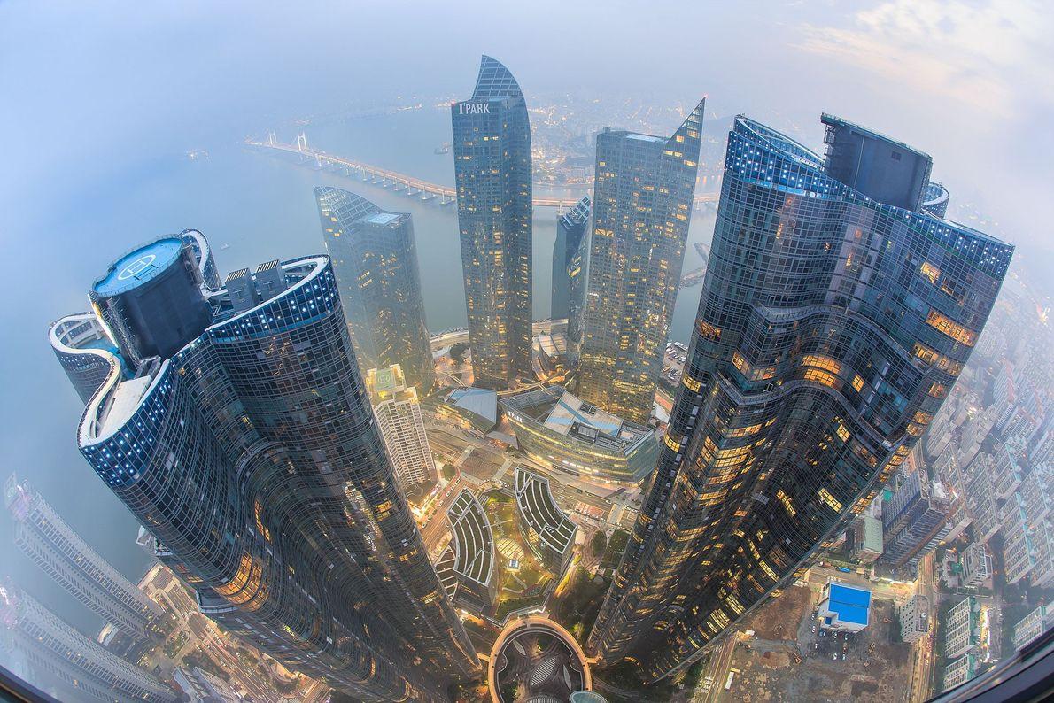 Niebla, Mar y Rascacielos