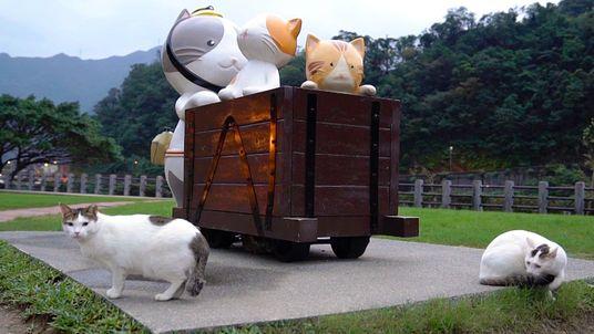 Visita Houtong, la aldea de los gatos de Taiwán