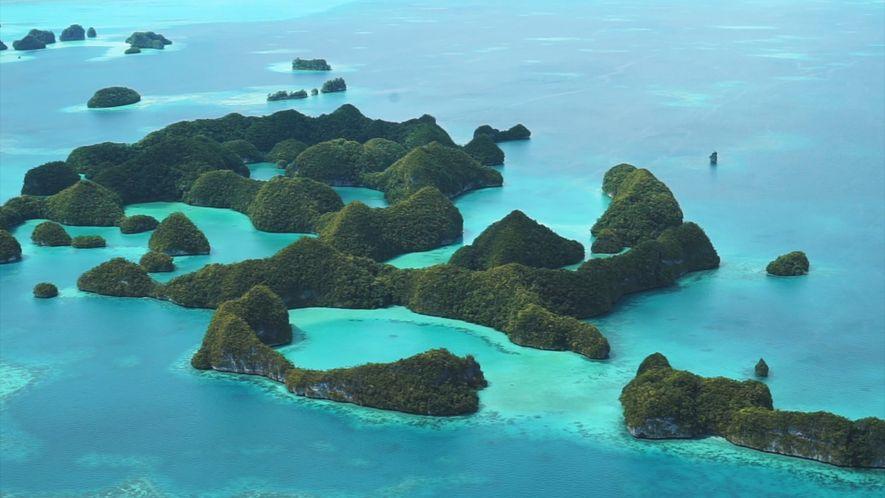 El compromiso medioambiental de Palaos será obligatorio para los turistas