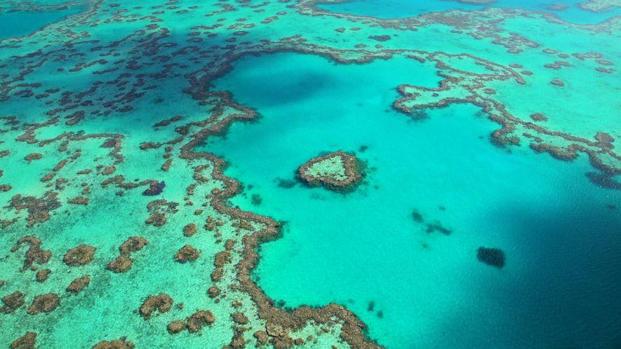 Explora el esplendor de la Gran Barrera de Coral australiana