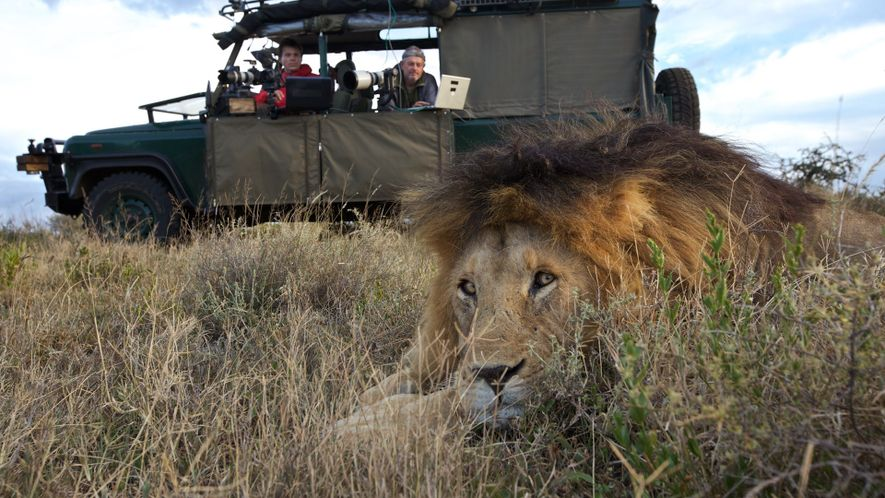 Los ingenieros que diseñan cámaras para fotografiar y estudiar a los animales