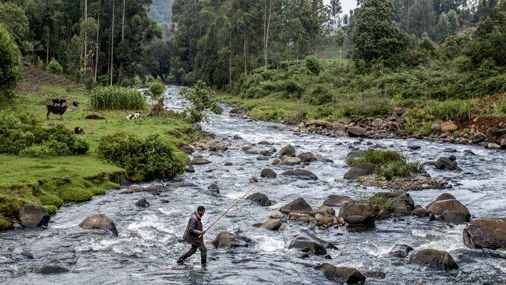 La pesca con mosca en las tierras altas de Kenia