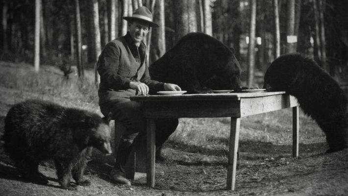 Yellowstone: un tesoro americano