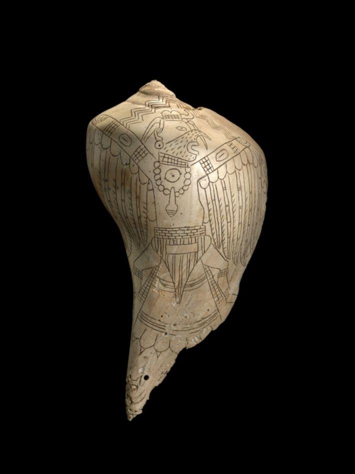 Vaso hecho con una concha
