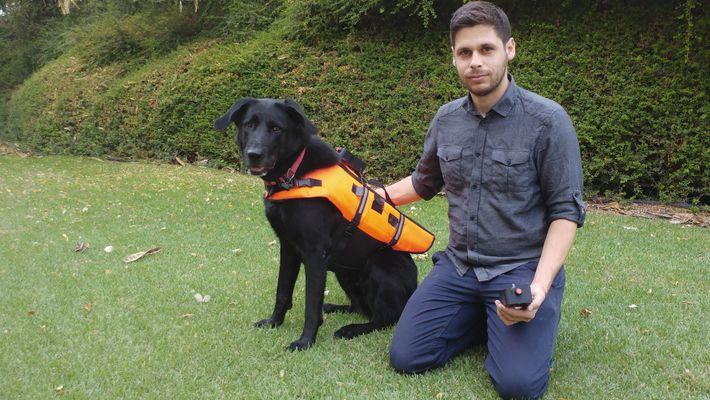 Un perro responde a las órdenes transmitidas por un chaleco vibratorio
