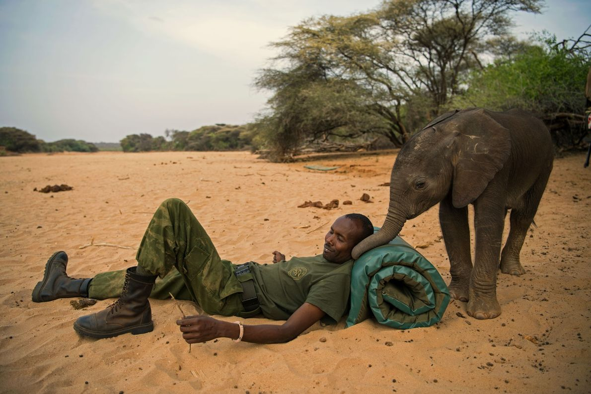 Refugio de Elefantes de Reteti
