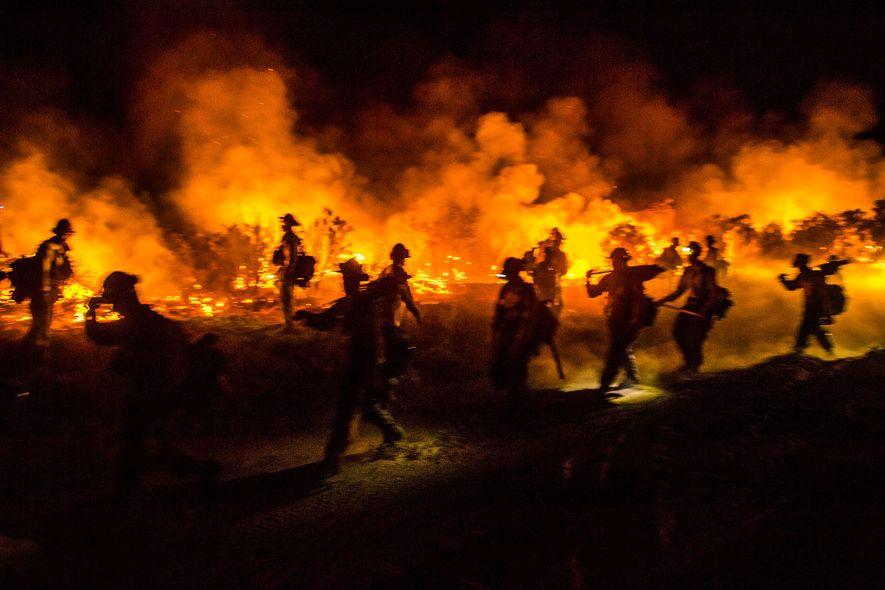 Las cuadrillas de bomberos equipados con motosierras, hachas y pulaskis colaboran en una operación para extinguir ...
