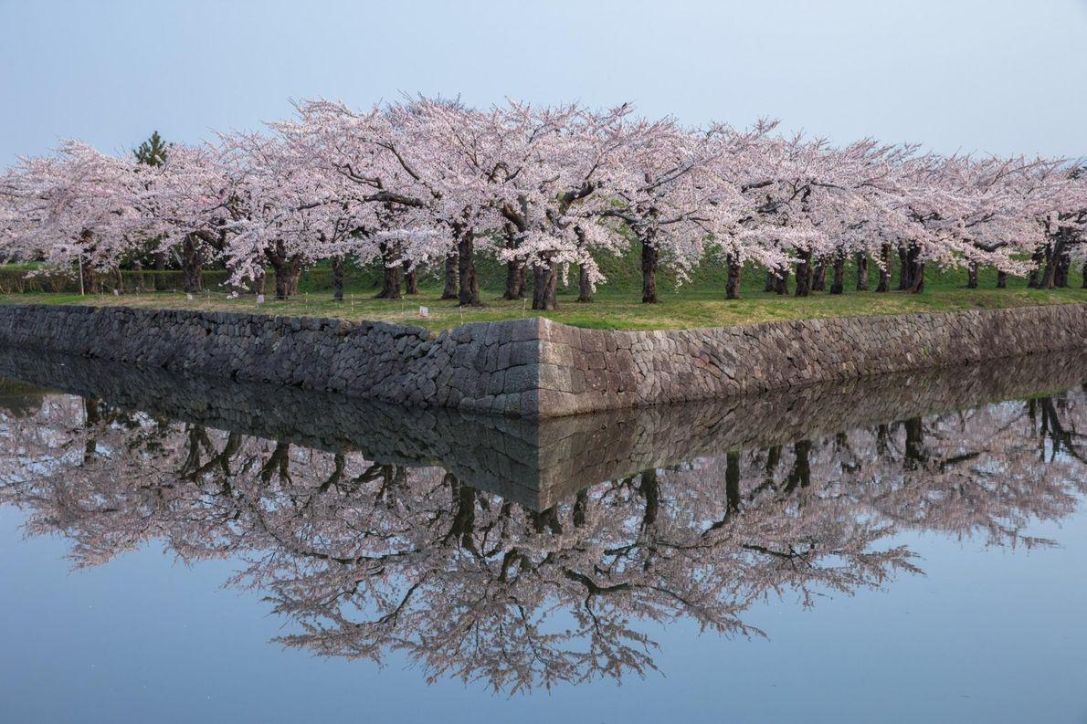 HIROSHI TANITA, NATIONAL GEOGRAPHIC YOUR SHOT