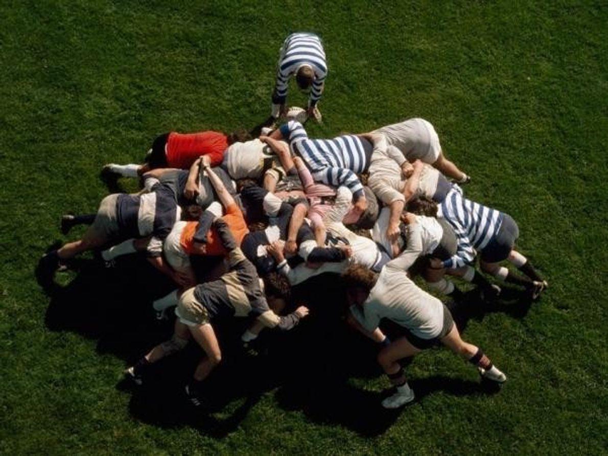 Jugadores de rugby compiten por la pelota en State College, Pensilvania.