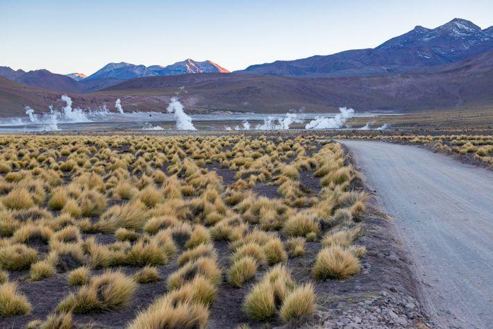 Las mañanas son el lugar ideal para contemplar los géiseres de El Tatio, en Atacama. A ...