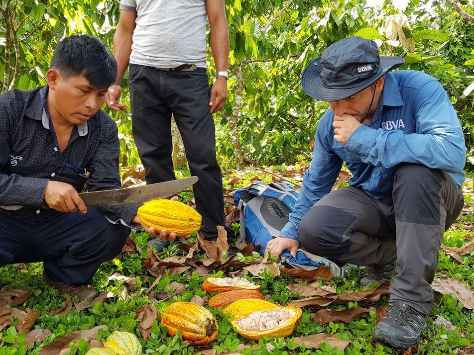 Imágenes: el viaje de Jordi Roca a través de la Amazonia