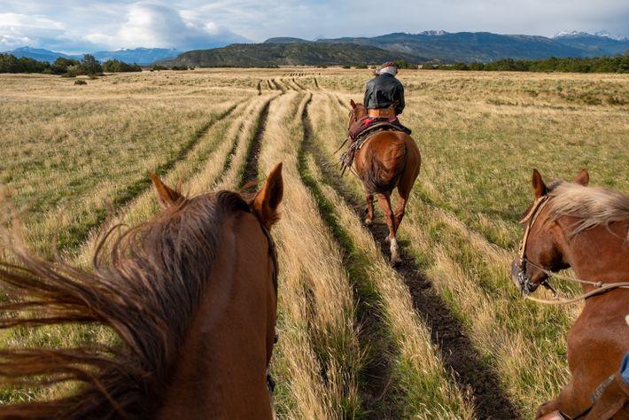 Un gaucho lleva a los visitantes a caballo por las onduladas praderas, o pampas, de la ...