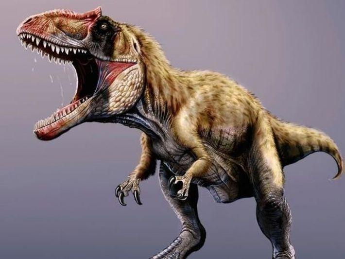 El dinosaurio pesaba más de cuatro toneladas y era tan largo como un autobús