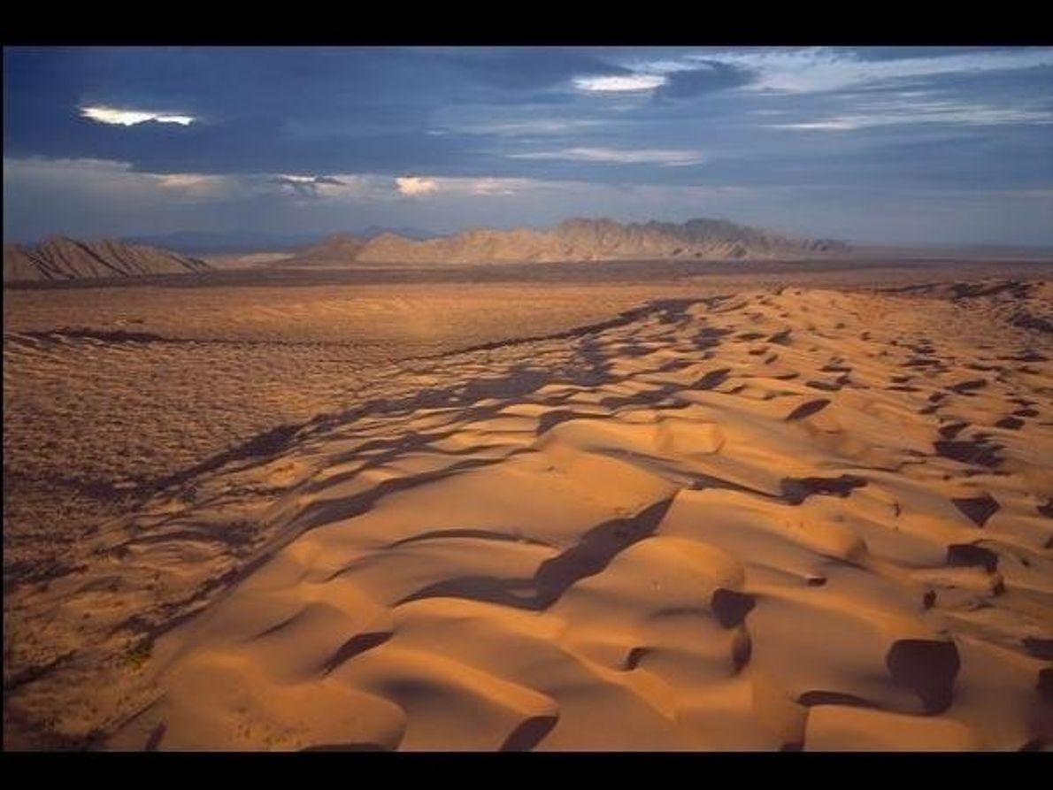 Reserva de la Biosfera de El Pinacate y Gran Desierto de Altar