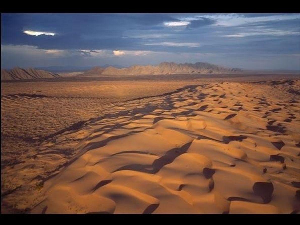Situada en el desierto de Sonora, en México, la reserva contiene la mayor área de dunas activas …