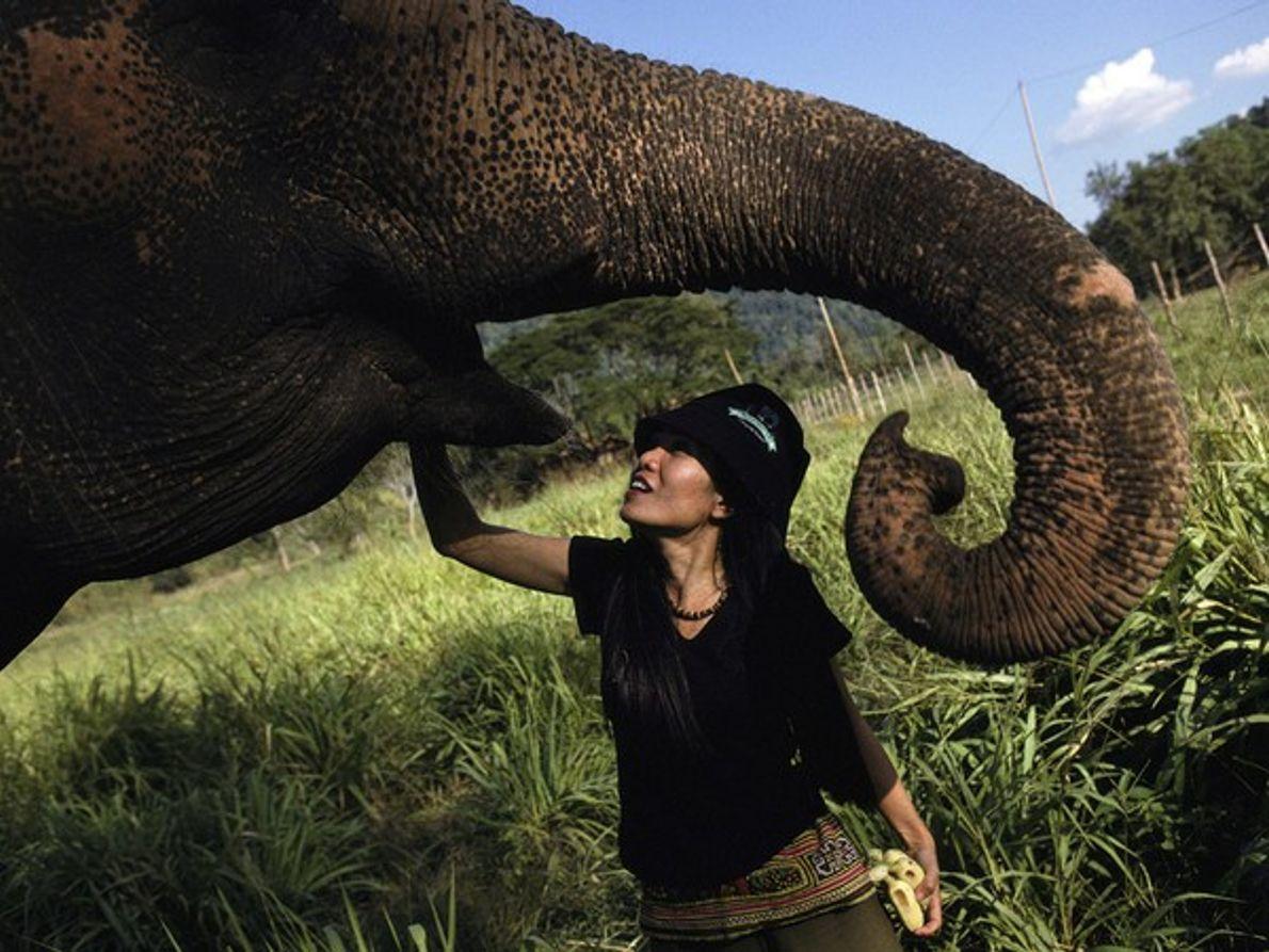 Parque Nacional de Elefantes de Chiang Mai