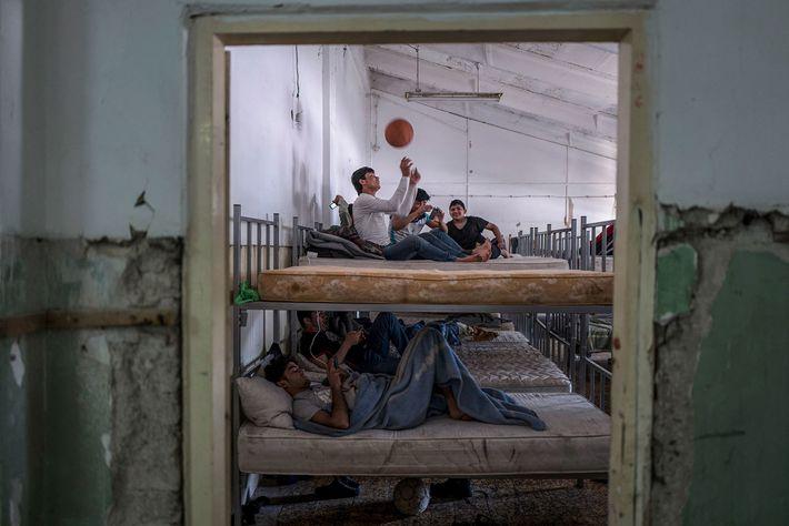 Los chicos juegan al baloncesto