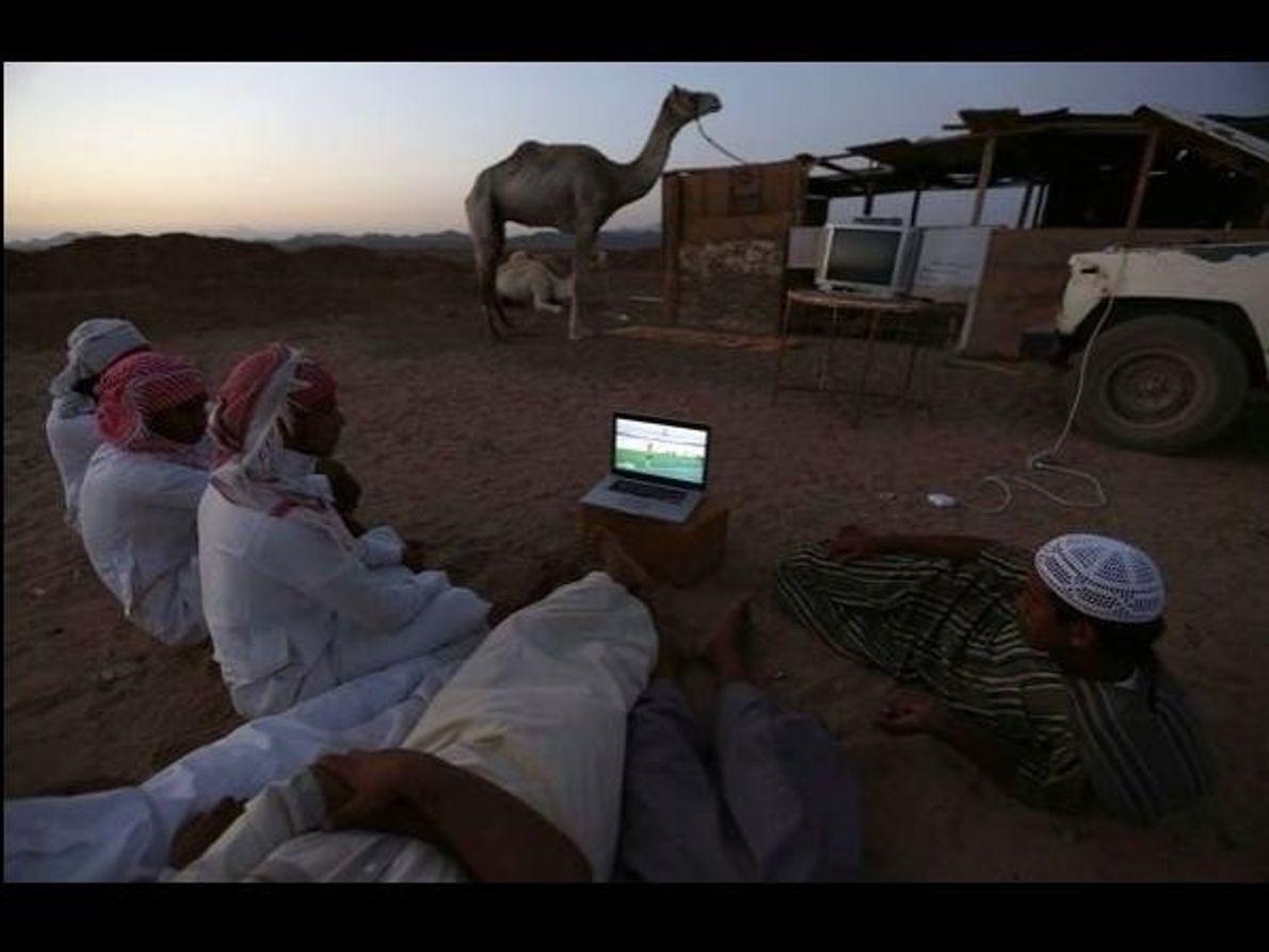 Entre camellos