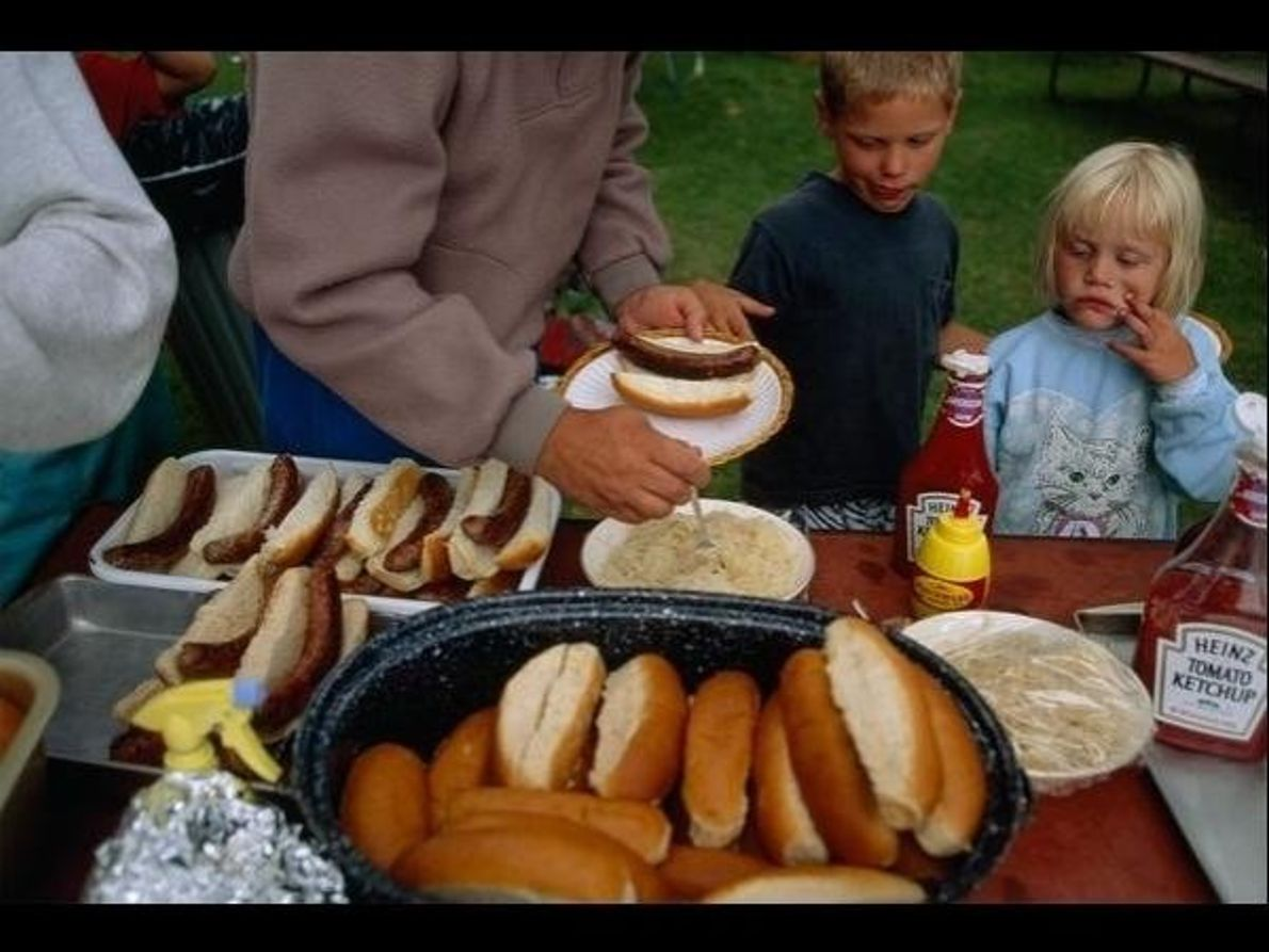 Pícnic-barbacoa