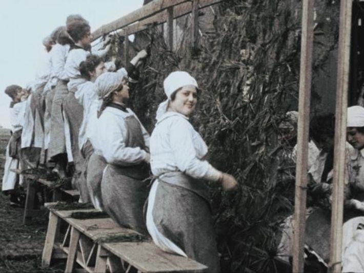 Las mujeres en la Primera Guerra Mundial