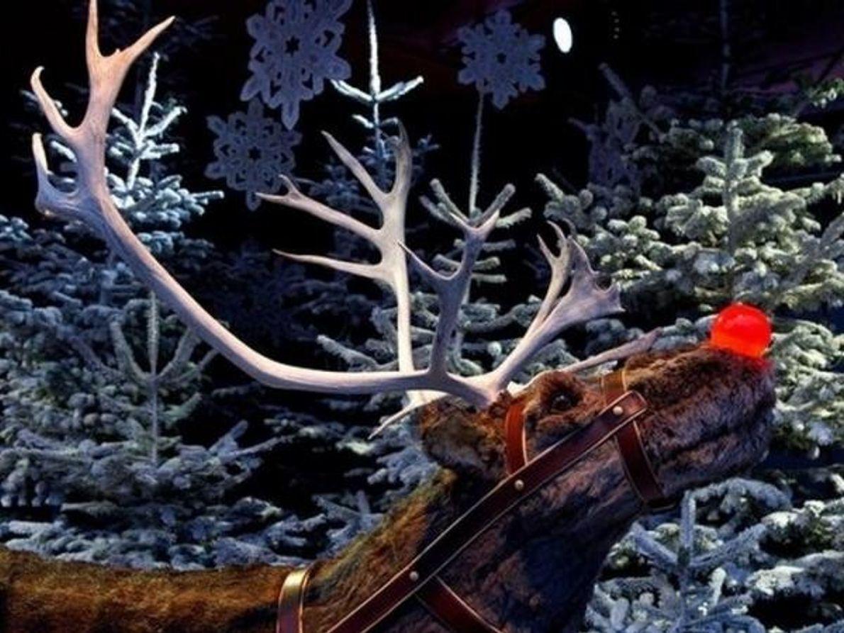 Rudolph y su nariz roja