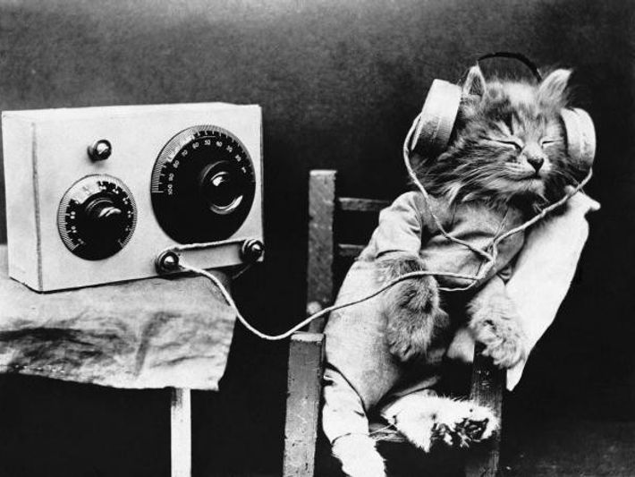 El gato Tibby escucha un programa de radio en 1926