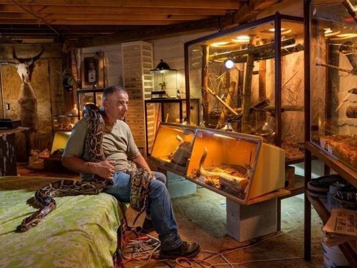 Albert Killian tiene docenas de serpientes venenosas en su habitación del centro de rescate, en Everglades