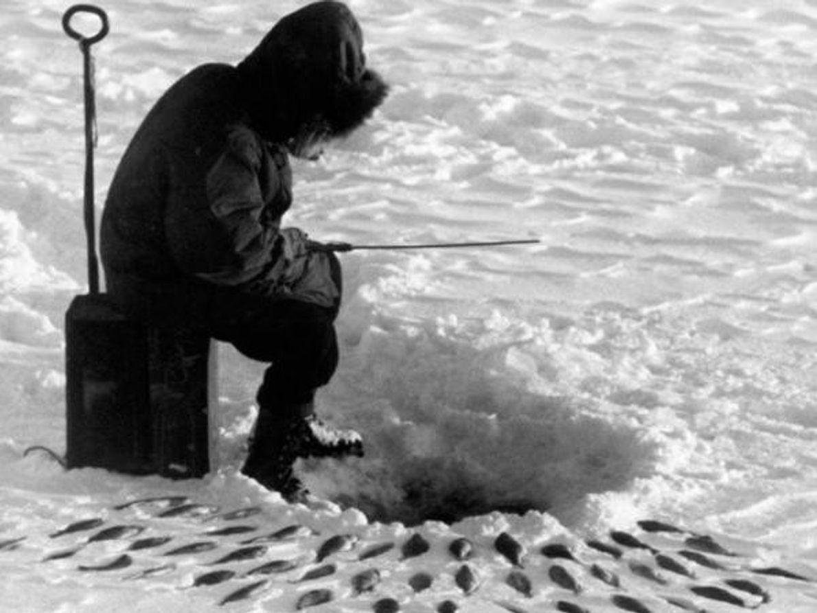 Gélica pesca en hielo
