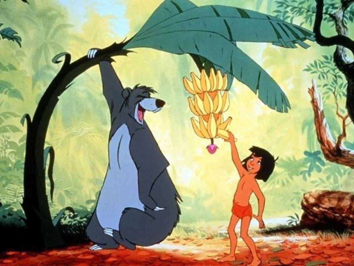En la película de animación de Disney de 1967, el oso Baloo era un gran fan ...