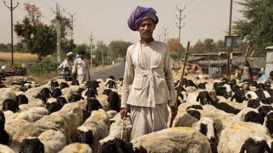 10 historias de peregrinaje por las carreteras de la India