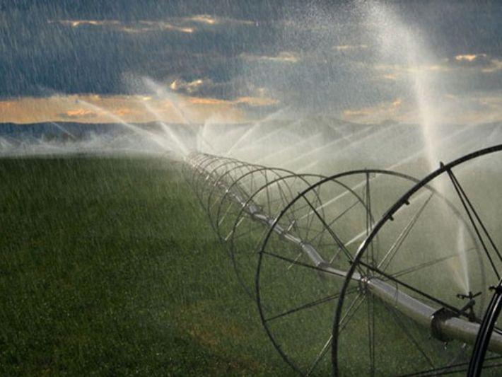 ¿Cómo podemos ahorrar agua?