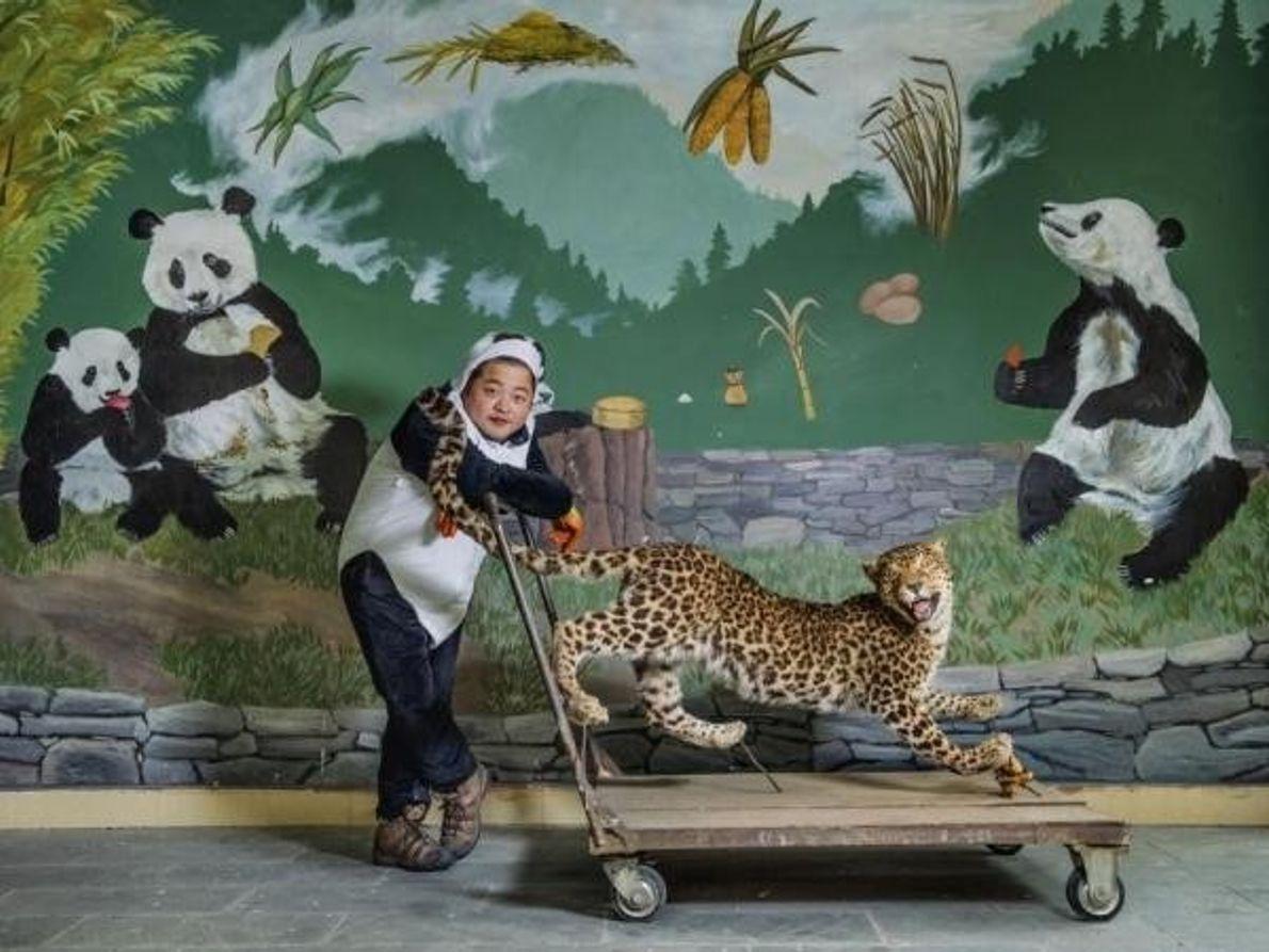 Cuidador de pandas en China