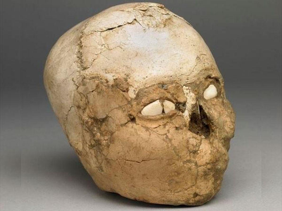Calavera del Neolítico