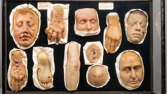 Las escalofriantes colecciones de un museo de rarezas
