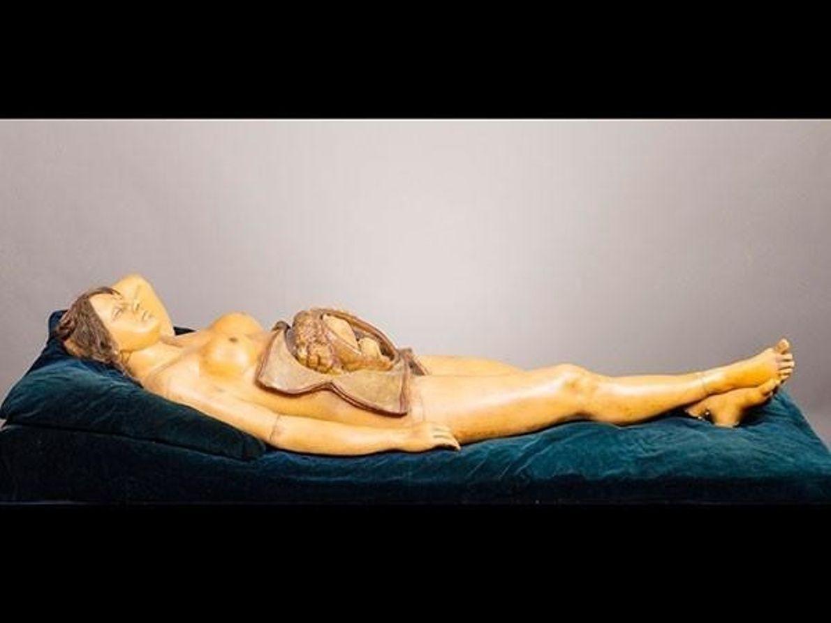 La Venus Anatómica